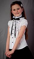 Блузка Свит блуз  мод. 2071к белая с чёрной лентой р.116