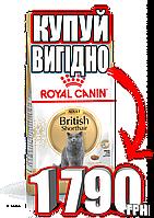 Сухой корм для британцев Royal Canin (Роял Канин) British Shorthair Adult 10кг