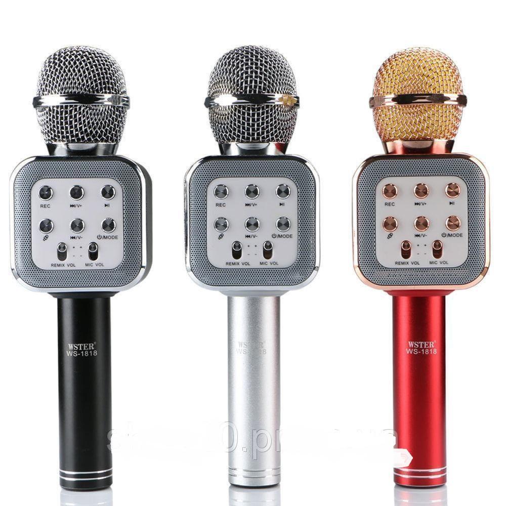 Беспроводной Bluetooth караоке-микрофон DM Karaoke WS1818