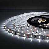Светодиодная лента B-LED 2835-60 IP20, негерметичная, 1м, фото 2