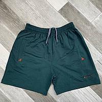 Шорты мужские хлопок Sportics, размеры 46-54, зелёные, 05618
