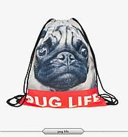 Рюкзак сумка 3D принт pug life пес бульдог