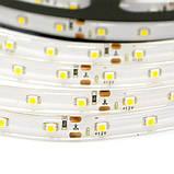 Светодиодная лента B-LED 3528-60 WW IP65 теплый белый, герметичная, 1м, фото 3