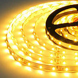 Светодиодная лента B-LED 3528-60 WW IP65 теплый белый, герметичная, 1м, фото 2
