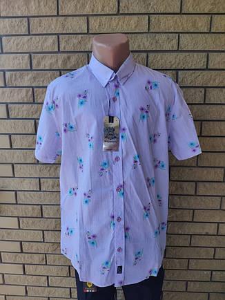 Рубашка мужская летняя коттоновая  брендовая высокого качества BAGARDA, Турция, фото 2