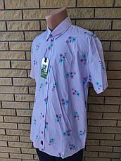 Рубашка мужская летняя коттоновая  брендовая высокого качества BAGARDA, Турция, фото 3