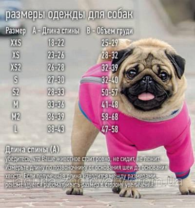 "Майка ""ФРЕШ"" для собак, размер XS 23-26/28-32см, фото 2"
