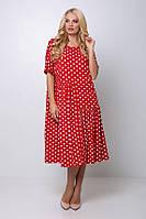 Платье в крупный горох ЭЛЕНА,в расцветках  (54-60) красное
