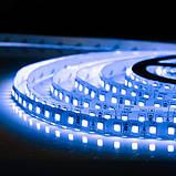 Светодиодная лента B-LED 3528-120 B IP20 синий, негерметичная, 1м, фото 3