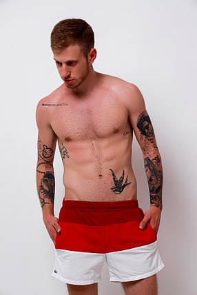 Мужские пляжные шорты Lacoste (S, M, L, XL размеры), фото 2