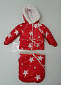 Детский зимний костюм из 3ех единиц (куртка, полукомбинезон, конверт) для детей от рождения до 1,5лет(86см), фото 4