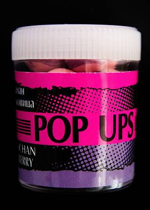 Бойлы POP UPS  Белачан шелковица  12mm, фото 2