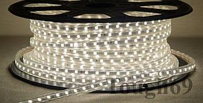 Dilux - Світлодіодна стрічка Premium SMD 5050 60шт/м IP67 220В біла