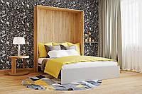 Шкаф-кровать двухспальная сп.м. 1600х2000