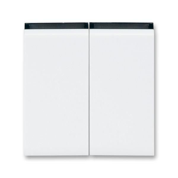 Вимикач 2 клавішний білий/димчастий чорний, Levit Elektro-Praga ABB