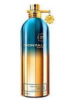 Montale Intense So Iris Edp U 100