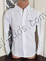 Однотонна сорочка для хлопчика 116-146 см(опт) (біла) (пр. Туреччина)