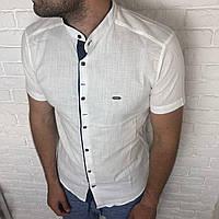 56424a6cc89b916 Рубашка мужская, молодежная М, L, XL приталенная, короткий рукав, слим фит