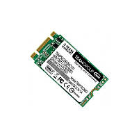 Накопитель Team Lite M.2 256 GB (F00161682)