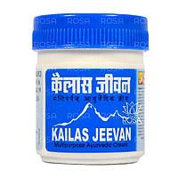Мазь-бальзам Кайлаш Дживан (Kailas Jeevan, ASUM) натуральное обезболивающее средство, 30 грамм