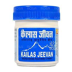 Мазь-бальзам Кайлаш Дживан (Kailas Jeevan, ASUM) натуральне знеболюючий засіб, 30 грам