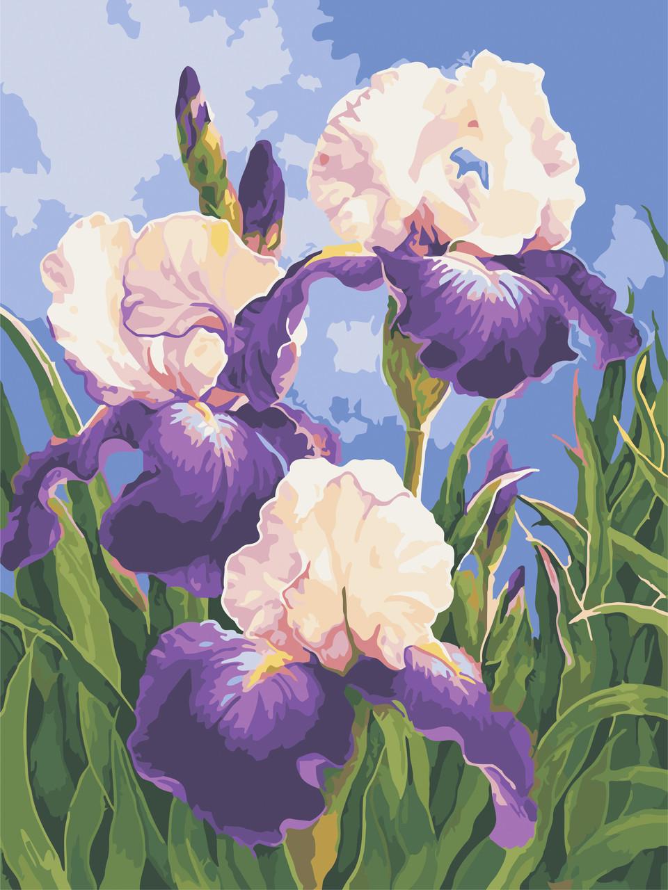 Набор живописи по номерам Весенние ирисы ArtStory AS0592 30 х 40 см (без коробки)