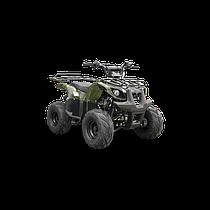 Квадроцикл Spark SP110-3