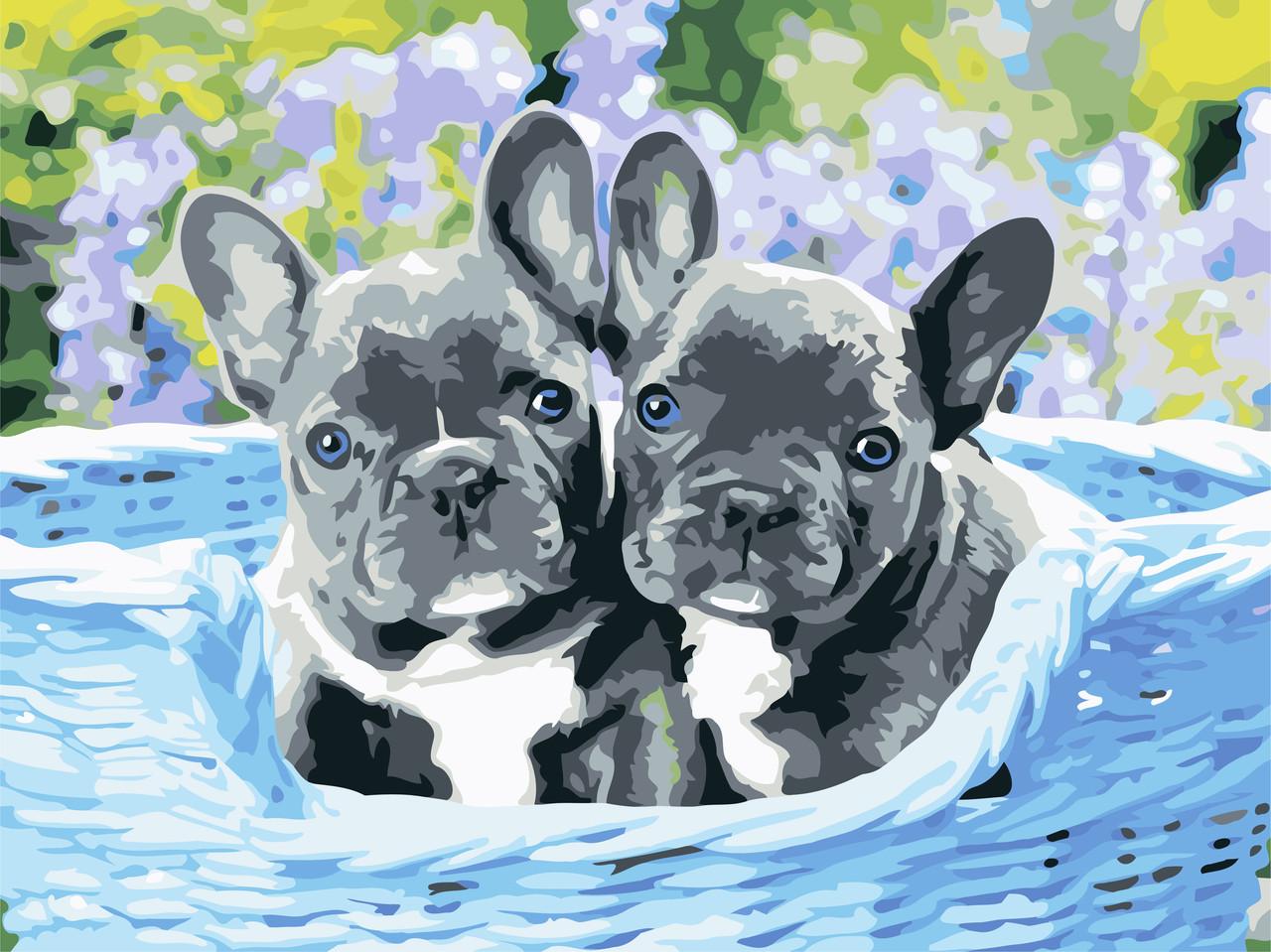 Картина по номерам Два пёсика ArtStory AS0596 30 х 40 см (без коробки)