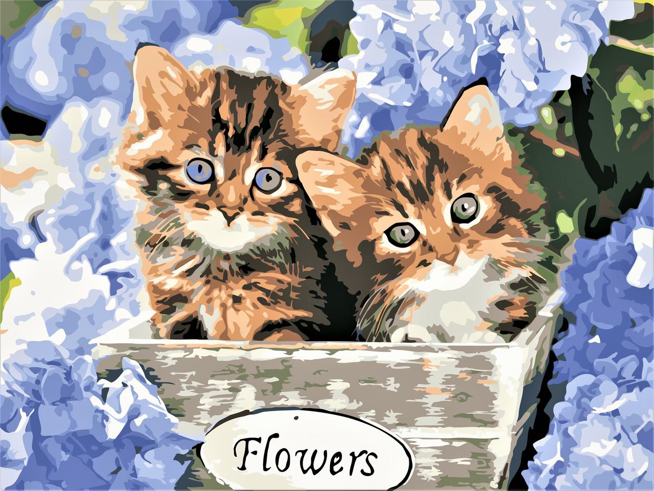 Картины по номерам Котята в цветах ArtStory AS0597 30 х 40 см (без коробки)