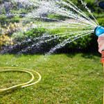 Качественный шланг для полива – легкое орошение участка