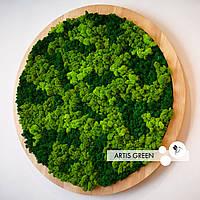 Круглая панель из скандинавского мха Artis Green 50 см с рамочкой. Хочется прикоснуться! P20