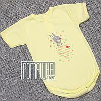 Детское боди футболка 92 12-18 мес легкий с коротким рукавом для малышей летний на лето РИБАНА 4757 Желтый