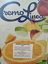 Стабілізатор для морозива Cremo 50 Frutta, фото 2