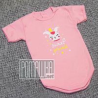 Детское боди футболка 86 9-12 мес легкий с коротким рукавом для малышей летний на лето РИБАНА 4757 Розовый