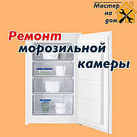Ремонт морозильной камеры в Запорожье