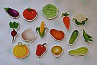 Овощи. Магнитики развивающие. Набор