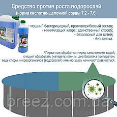 Альгекс ТОП концентрат препарат для очистки от водорослей Kerex 1 л Венгрия, фото 2