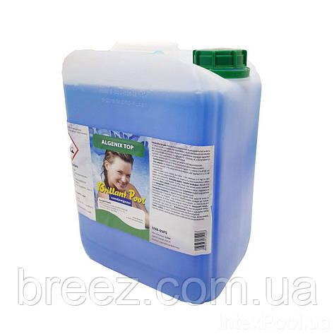 Альгекс ТОП концентрат препарат для очистки от водорослей Kerex 5 л Венгрия, фото 2
