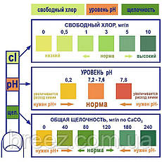 Альгеникс препарат для очистки от водорослей Kerex 5 л Венгрия, фото 2