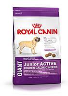 Корм  для щенков гигантских пород с высокой активностью- Royal Canin GIANT JUNIOR ACTIVE, 15 кг