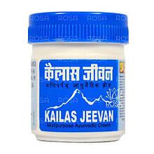 Мазь-бальзам Кайлаш Дживан (Kailas Jeevan, ASUM) натуральное обезболивающее средство, 60 г
