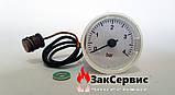 Манометр на газовый котел Domicompact, Domiproject, Divatop, Fereasy 39818210, фото 3