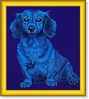Репродукция  современной картины  «Голубая такса на синем» 30 х 25 см