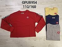 Кофты для девочек оптом,  Glo-Story, 110-160, арт. GPU-8954