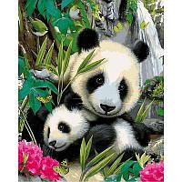 "Картина по номерам, картина-раскраска ""Панды"" 40Х50см VP812"