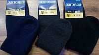 """Чоловічі шкарпетки,""""Житомир Махра""""ассорти 27-29, фото 1"""