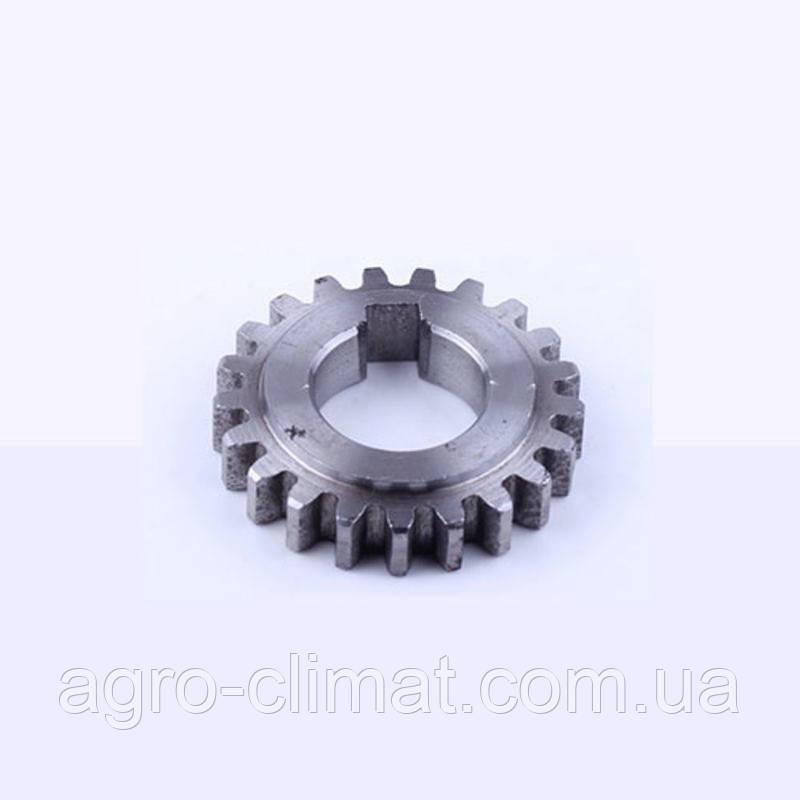 Шестерня ведомая запускающая (21 зуб) R190