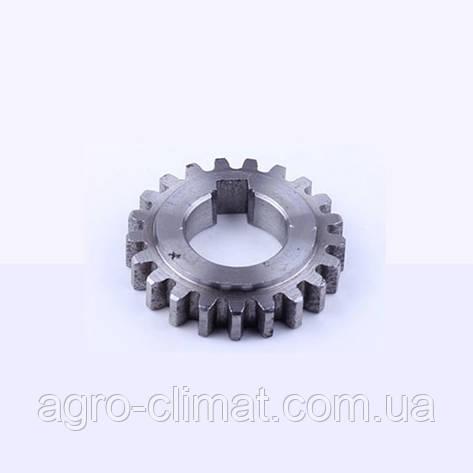 Шестерня ведомая запускающая (21 зуб) R190, фото 2