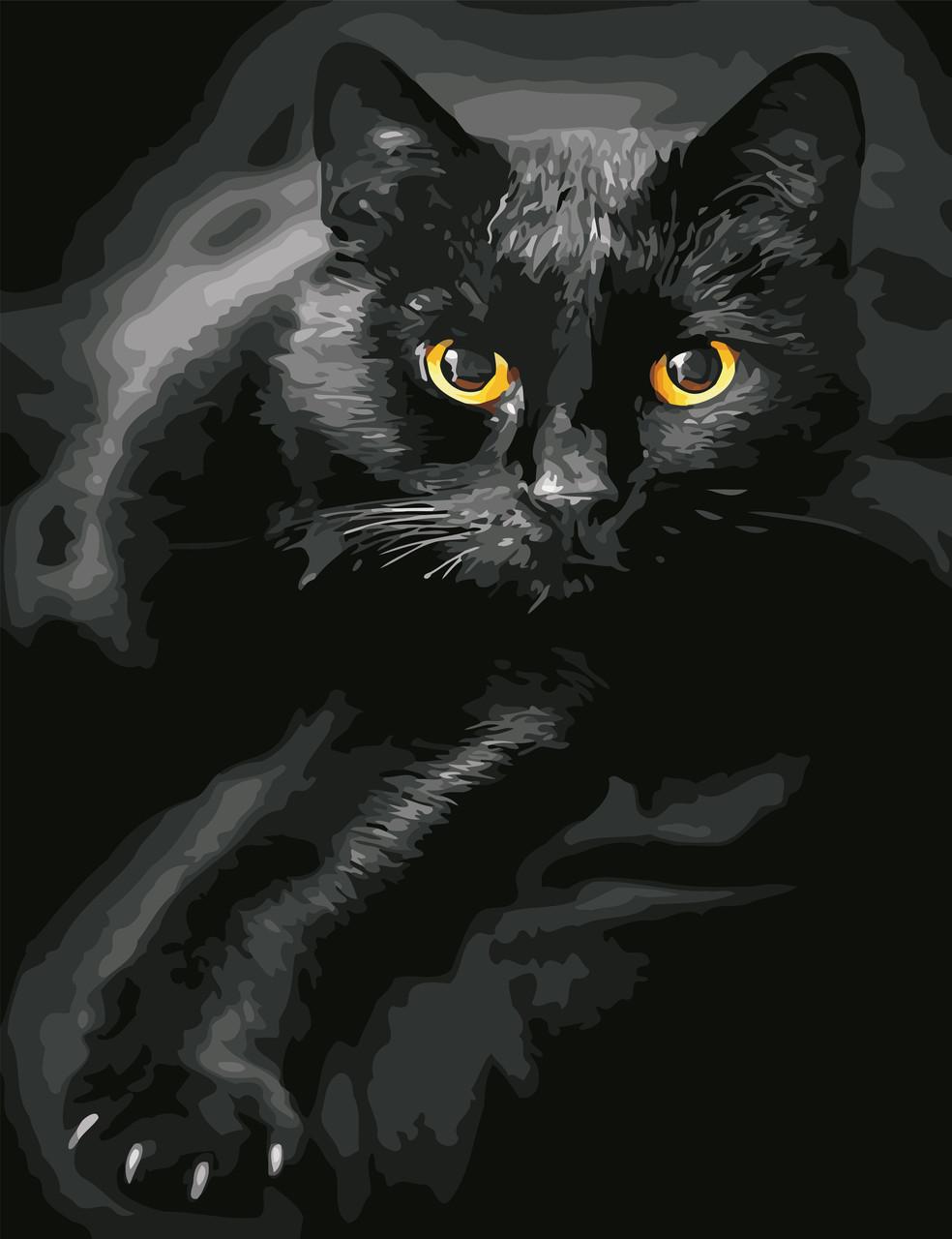 Картины по номерам Черный кот ArtStory AS0623 50 х 65 см