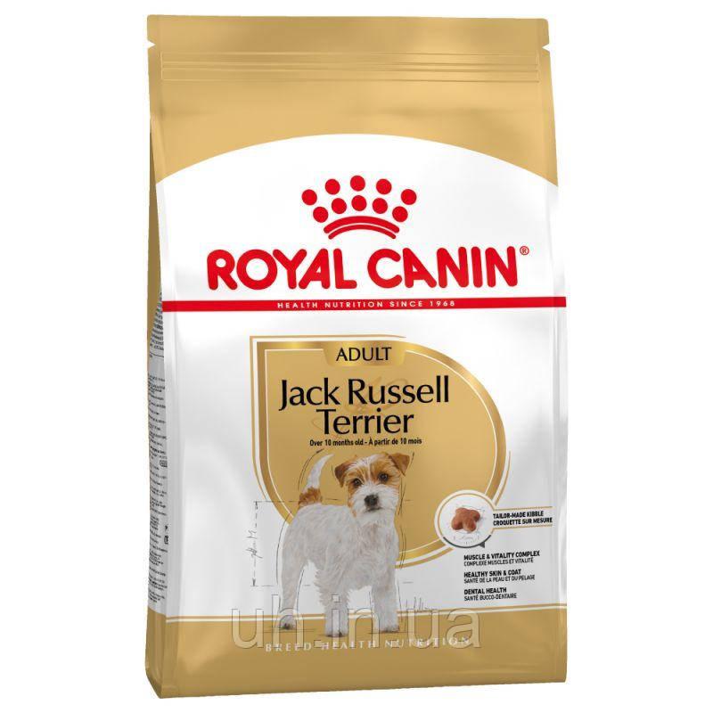Royal Canin Jack-Russell Adult сухий корм для собак від 10 місяців 1,5 КГ